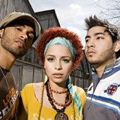 Amor Es Algo Precioso by Group 1 Crew