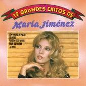 12 Grandes exitos (Circulo de bellas artes) de Maria Jimenez