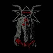 Give 'Em Hell by Witchfynde