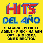 Hits del Año de Various Artists