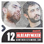 Already Mixed Vol.12 - Cd2 (Compiled & Mixed by Gunther & Stamina) - EP by Various Artists
