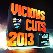Vicious Cuts 2013 by Various Artists
