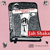 New Testaments of Dub Chapter 2 de Jah Shaka