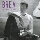Laberinto de emociones de Brea