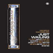 Just Wailing: 50 Masterpieces By 26 Blues Harmonica Heroes de Various Artists