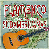Flamenco Con Raices Sudamericanas de Various Artists
