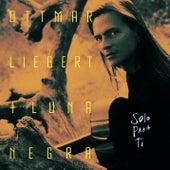 Solo Para Ti de Ottmar Liebert