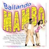 Bailando Mambo by Perez Prado