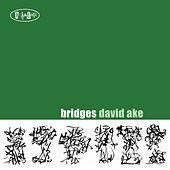 Bridges by David Ake