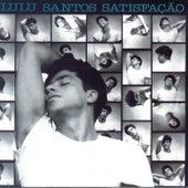 Satisfação de Lulu Santos