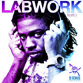 Di Genius Presents: Labwork, Vol. 3 von Various Artists