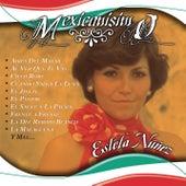 Mexicanisimo by Estela Nuñez