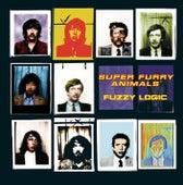 Fuzzy Logic de Super Furry Animals
