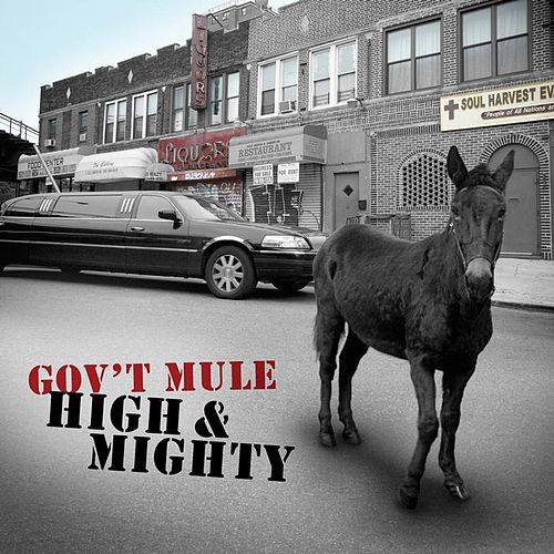 High & Mighty by Gov't Mule