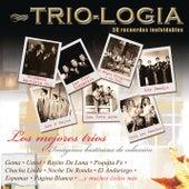 Trio - Logia Los Mejores Trios by Various Artists