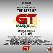 Roots, Reggae & Dancehall (The Best of GT Muzik Vol 1) de Various Artists