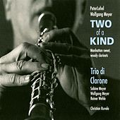 Two of a Kind de Various Artists