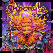 Museum of Consciousness von Shpongle