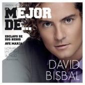 Lo Mejor De David Bisbal de David Bisbal