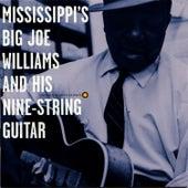 Mississippi's Big Joe Williams and His Nine-String Guitar de Big Joe Williams