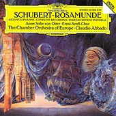 Schubert: Music for
