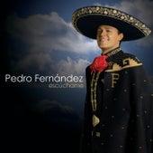 Escúchame by Pedro Fernandez