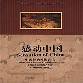 Sensation Of China by Chinese Pipa Musician