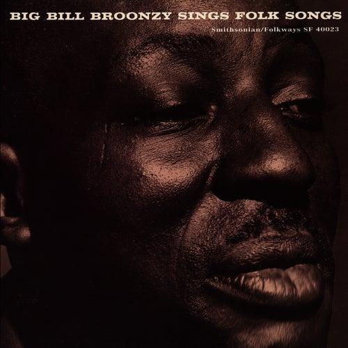 Big Bill Broonzy Sings Folk Songs by Big Bill Broonzy