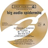 Big Audio Spidermite by Various Artists