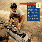 Music Of Indonesia, Vol. 7: Music From The Forests Of Riau And Mentawai by Various Artists