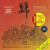 Homebound (Gui) by Jiangsu Song and Dance Ensemble Folk Orchestra