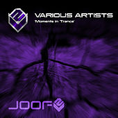 Moments In Trance by Various Artists