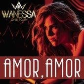 Amor, Amor de Wanessa Camargo