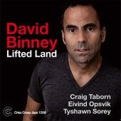 Lifted Land by David Binney