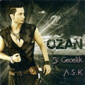 Bir Gecelik A.ş.k by Ozan
