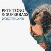 Wonderland de Pete Tong