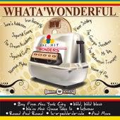 Whata' Wonderful One Hit Wonders de Various Artists