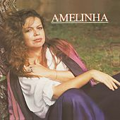 Série Discobertas - Amelinha by Amelinha