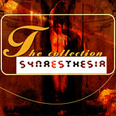 The Collection by Synaesthesia