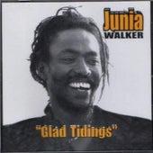 Glad Tidings by Junia Walker