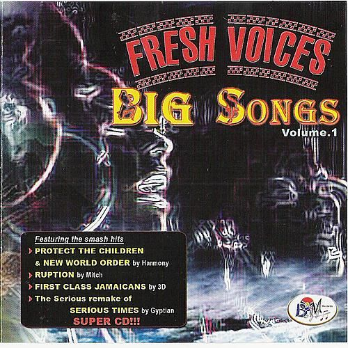 Fresh Voices - Big Songs Vol. 1 by Various Artists