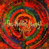 40 Days de The Wailin' Jennys