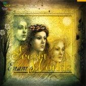 Secrets Worlds by Enam