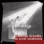 The Great Awakening by Timothy Brindle