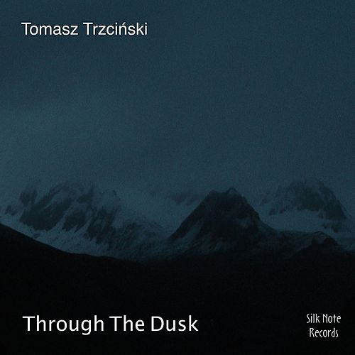 Through the Dusk von Tomasz Trzcinski