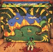Estrangeiro de Caetano Veloso