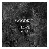 I Love You by Woodkid