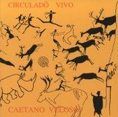 Circulado Vivo de Caetano Veloso