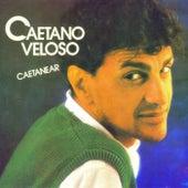 Caetanear de Caetano Veloso