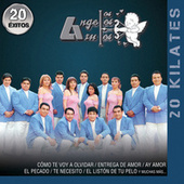 20 Kilates 20 Éxitos by Los Angeles Azules
